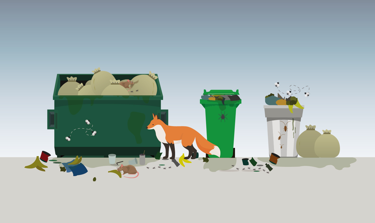 Overflowing garbage bins: 5 impacts on health and environment, and how to prevent