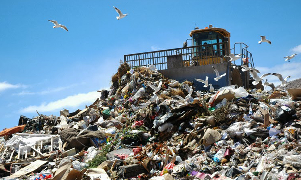 Australians are paying a high price for landfills and recycling – but there are ways to save